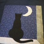 Cat and Moon